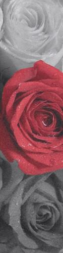 rose grip tape Custom skateboard griptape