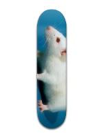 CityRat Team Deck Park Skateboard 7 7/8 x 31 5/8