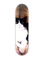 Lulu Park Skateboard 8 x 31 3/4