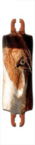 Wild Horse Mantis Complete v2 Longboard