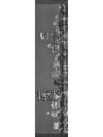Boston Skyline Zoom Custom longboard griptape