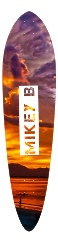 Mikey b Classic Pintail 10.25 x 42