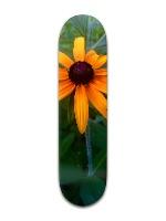 The Black Eyed Susan Banger Park Skateboard 8 x 31 3/4
