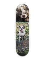 Arlo Banger Park Skateboard 8 x 31 3/4