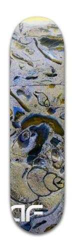"""""""af fossil rock' Banger Park Skateboard 8 x 31 3/4"""