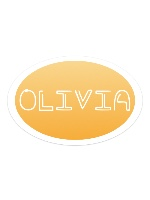 Sticker 6 x 4 Oval