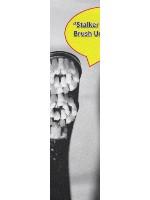 stalker brush Custom skateboard griptape