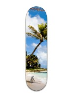 Chill on a Beach Banger Park Skateboard 8 x 31 3/4