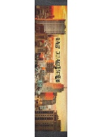 San Francisco 2 Custom longboard griptape