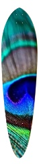 Classic Pintail 10.25 x 42