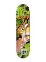 RW Snowy Mtn Deck Banger Park Skateboard 8 x 31 3/4