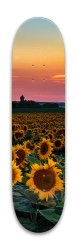 im a sunflower Park Skateboard 8 x 31.775