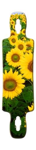 Sunflower oasis Gnarlier 38 Skateboard Deck v2