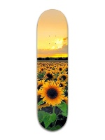 Sunflower Banger Park Skateboard 8 x 31 3/4