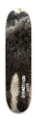 Miska the Hungarian pumi Park Skateboard 7.88 x 31.495