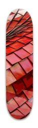 Texture skateboard Park Skateboard 7.88 x 31.495