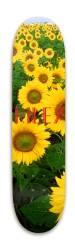 Riley Park Skateboard 7.88 x 31.495