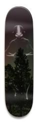 Avatar State Park Skateboard 8.5 x 32.463