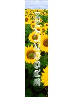 Sunflowers Custom longboard griptape