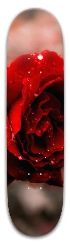 Wet rose Park Skateboard 8 x 31.775