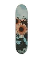 Good vibes Banger Park Complete Skateboard 7 3/8 x 31 1/8