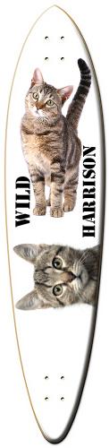 WILD HARRISONS BOARD Classic Dart