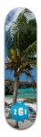 Issac Park Skateboard 8.5 x 32 1/8