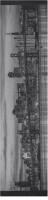 San Fran Custom longboard griptape