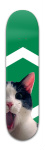 Chat Banger Park Skateboard 8 x 31 3/4