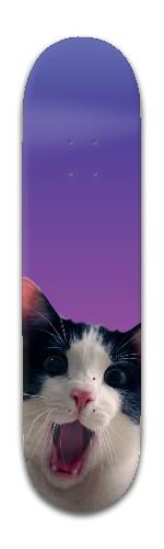 The cat Banger Park Skateboard 8 x 31 3/4