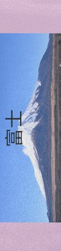 FUJI Custom longboard griptape