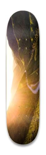 California skateboard Park Skateboard 8.25 x 32.463