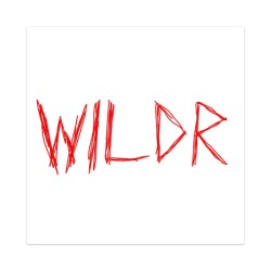 WILDR Sticker 4 x 4 Square