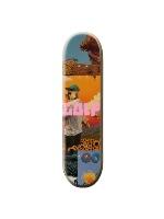 Skateboard 31.7 x 8.0