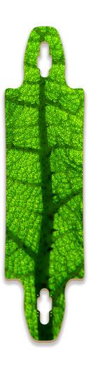 Leafy Gnarlier 38 Skateboard Deck