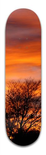 Fall Sunset Banger Park Skateboard 8.5 x 32 1/8