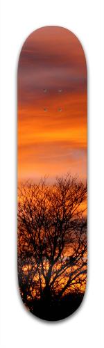 Fall Sunset Banger Park Skateboard 7 3/8 x 31 1/8